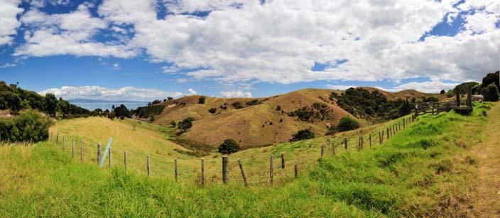 Neuseeland grüne Hügel