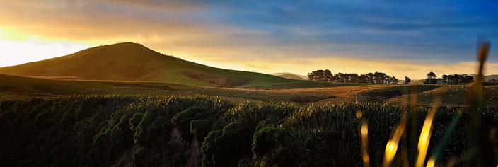 Neuseeland Catlins grüne Hügel