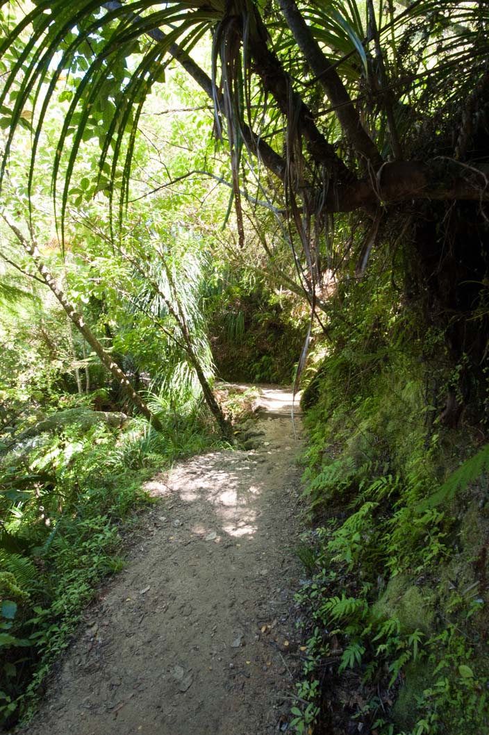 Neuseeland Abel Tasman Park