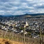 Wahrheit oder Pflicht: Weingeschichten aus dem Ahrtal
