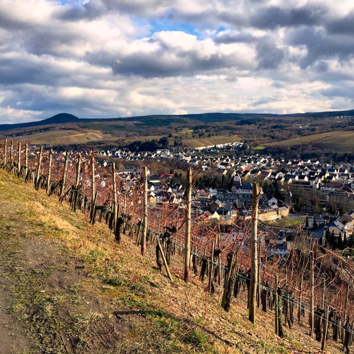 rotweinwanderweg-ahrtal-ahrweiler13