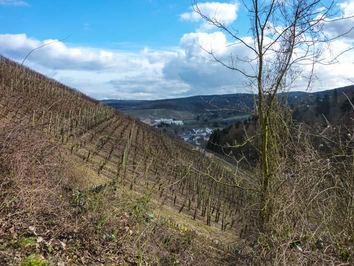 rotweinwanderweg-ahrtal-ahrweiler4