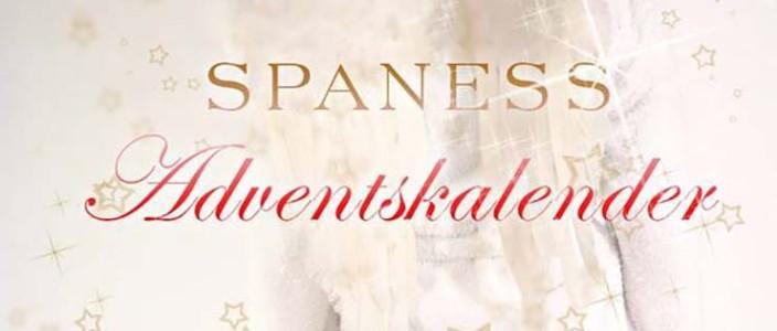 spaness online adventskalender 2015