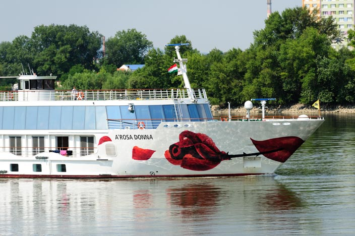Fließen im Nationalpark der Donau Auen