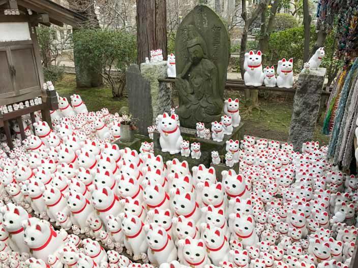 Tempel der Winkekatze: Gotokuj in Tokio