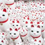Auf den Spuren der Winkekatze –  Gotokuji-Tempel in Tokio